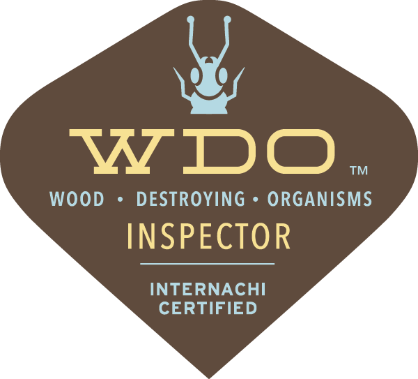 Termite inspectors South West, Ohio