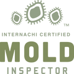Clermont mold inspection near me