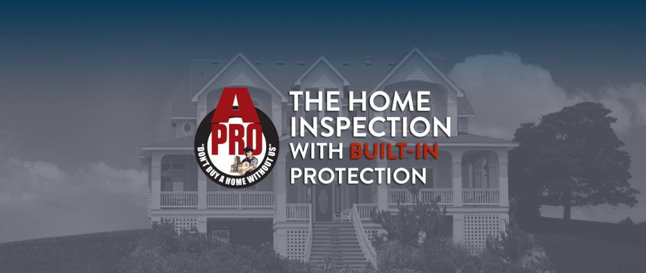 Clermont winter home inspection