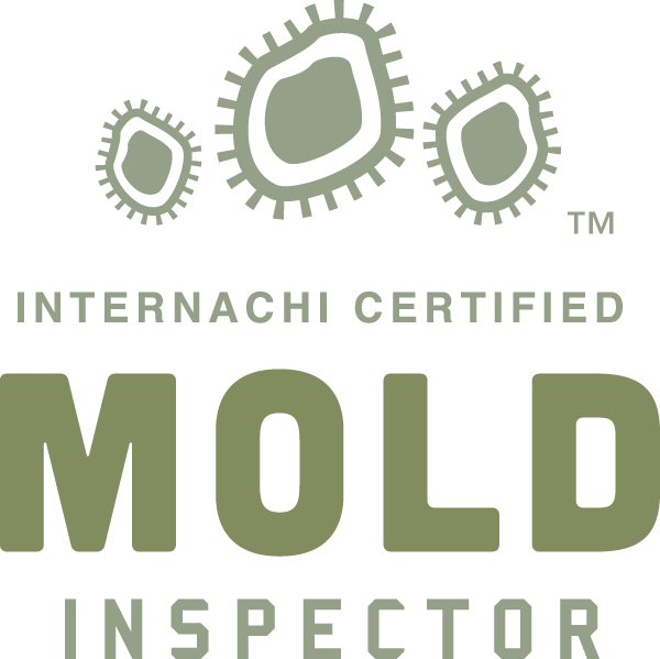 Hamilton mold inspection near me