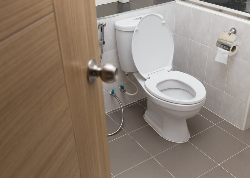 Toilet Inspection Milford